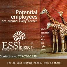 ESS-Direct-Ad.jpg